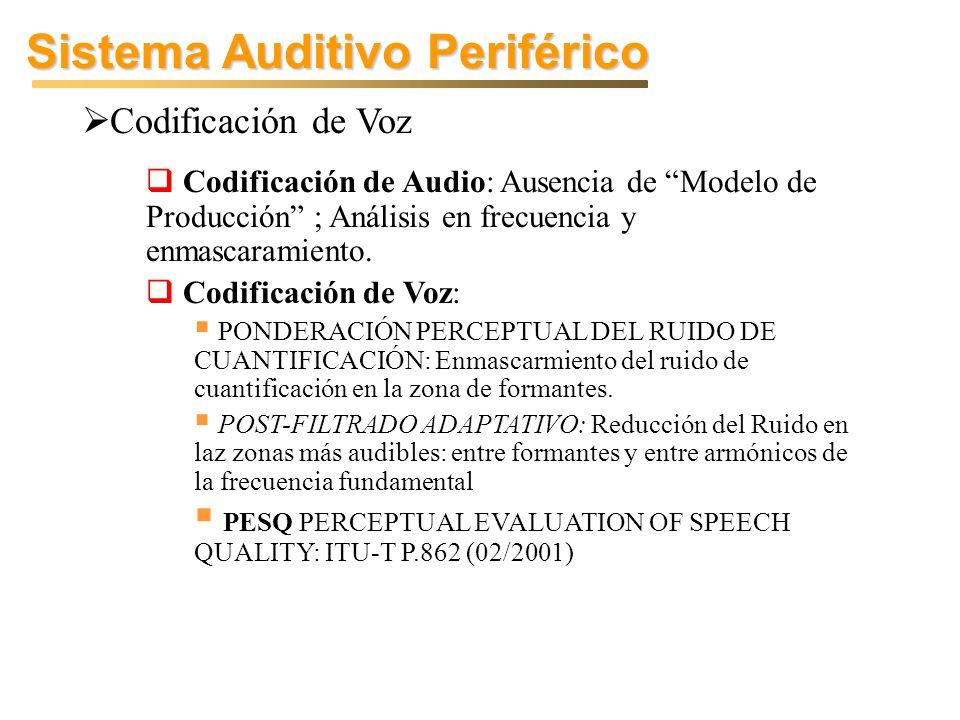 Sistema Auditivo Periférico Codificación de Voz Codificación de Audio: Ausencia de Modelo de Producción ; Análisis en frecuencia y enmascaramiento.