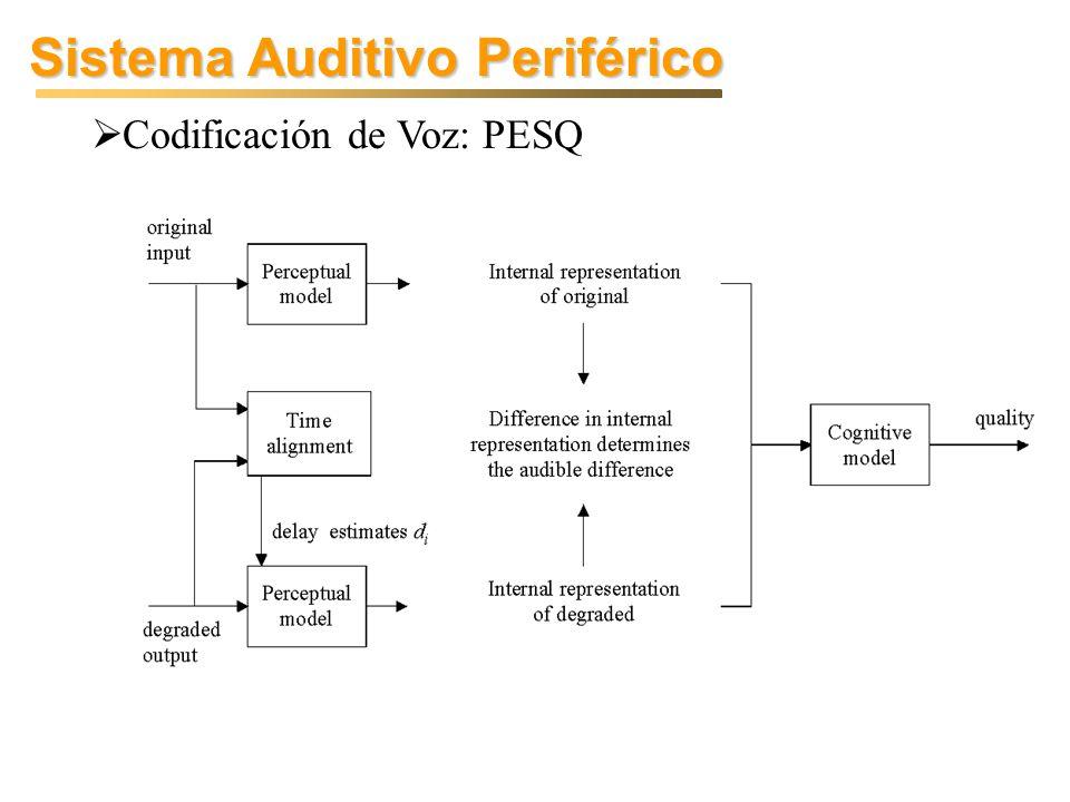 Sistema Auditivo Periférico Codificación de Voz: PESQ