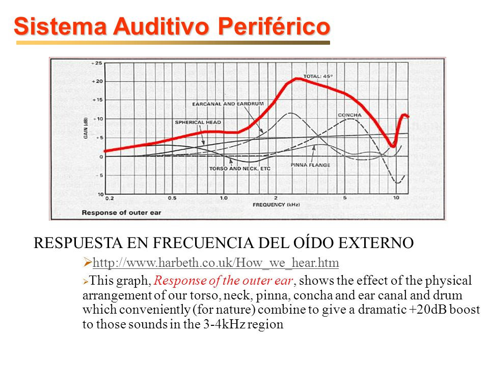 Sistema Auditivo Periférico RESPUESTA EN FRECUENCIA DEL OÍDO EXTERNO http://www.harbeth.co.uk/How_we_hear.htm This graph, Response of the outer ear, s