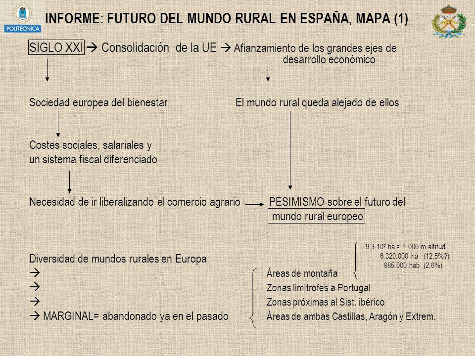 INFORME: FUTURO DEL MUNDO RURAL EN ESPAÑA, MAPA (1) SIGLO XXI Consolidación de la UE Afianzamiento de los grandes ejes de desarrollo económico Socieda