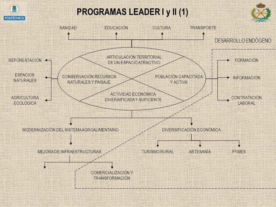 PROGRAMAS LEADER I y II (1) ARTICULACIÓN TERRITORIAL DE UN ESPACIO ATRACTIVO POBLACIÓN CAPACITADA Y ACTIVA ACTIVIDAD ECONÓMICA DIVERSIFICADA Y SUFICIE
