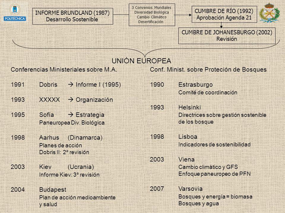 INFORME BRUNDLAND (1987) Desarrollo Sostenible CUMBRE DE RÍO (1992) Aprobación Agenda 21 3 Convenios Mundiales Diversidad Biológica Cambio Climático D
