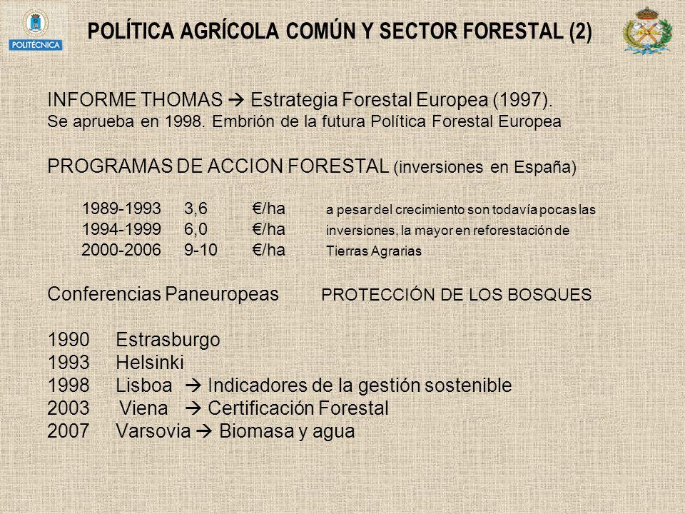 POLÍTICA AGRÍCOLA COMÚN Y SECTOR FORESTAL (2) INFORME THOMAS Estrategia Forestal Europea (1997). Se aprueba en 1998. Embrión de la futura Política For