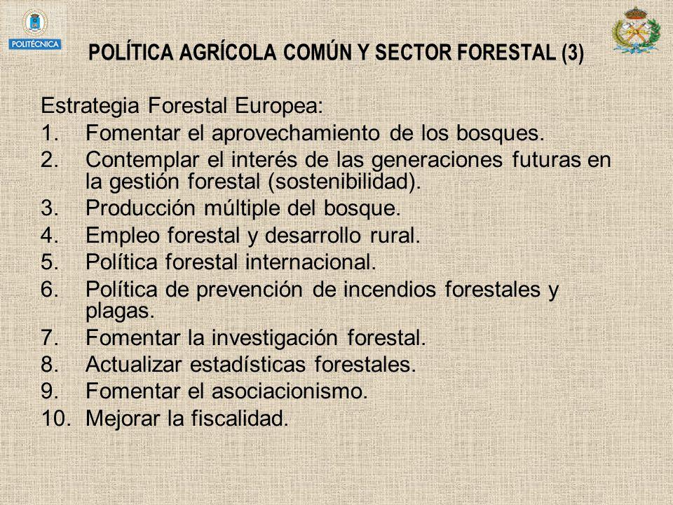 POLÍTICA AGRÍCOLA COMÚN Y SECTOR FORESTAL (3) Estrategia Forestal Europea: 1.Fomentar el aprovechamiento de los bosques. 2.Contemplar el interés de la