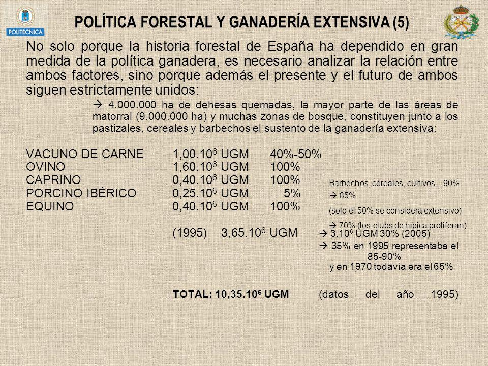 POLÍTICA FORESTAL Y GANADERÍA EXTENSIVA (5) No solo porque la historia forestal de España ha dependido en gran medida de la política ganadera, es nece