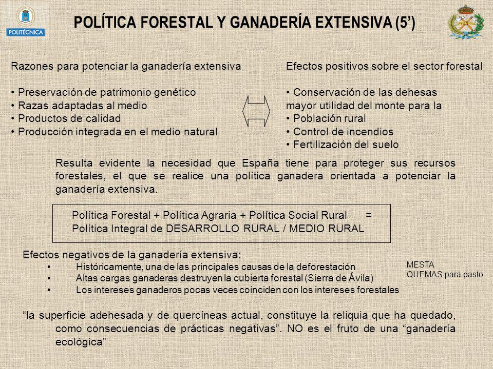 POLÍTICA FORESTAL Y GANADERÍA EXTENSIVA (5) Razones para potenciar la ganadería extensiva Preservación de patrimonio genético Razas adaptadas al medio