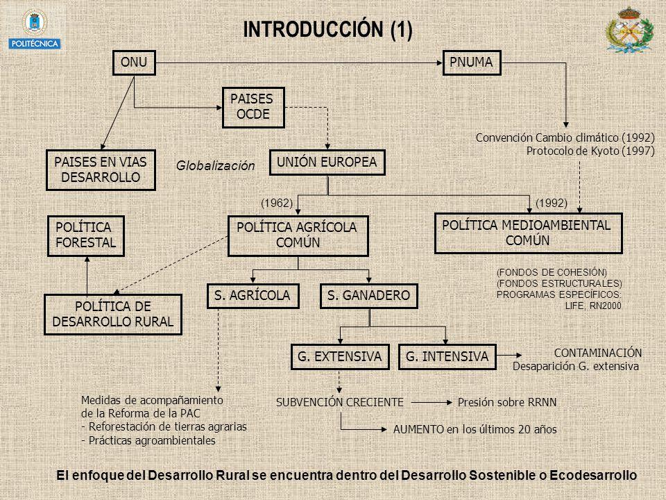 INTRODUCCIÓN (1) PAISES OCDE UNIÓN EUROPEA POLÍTICA AGRÍCOLA COMÚN POLÍTICA MEDIOAMBIENTAL COMÚN PAISES EN VIAS DESARROLLO POLÍTICA FORESTAL S. AGRÍCO