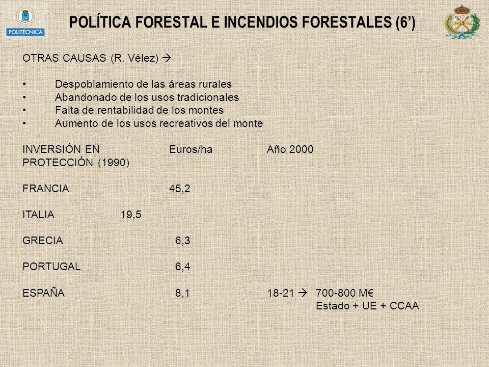 POLÍTICA FORESTAL E INCENDIOS FORESTALES (6) OTRAS CAUSAS (R. Vélez) Despoblamiento de las áreas rurales Abandonado de los usos tradicionales Falta de