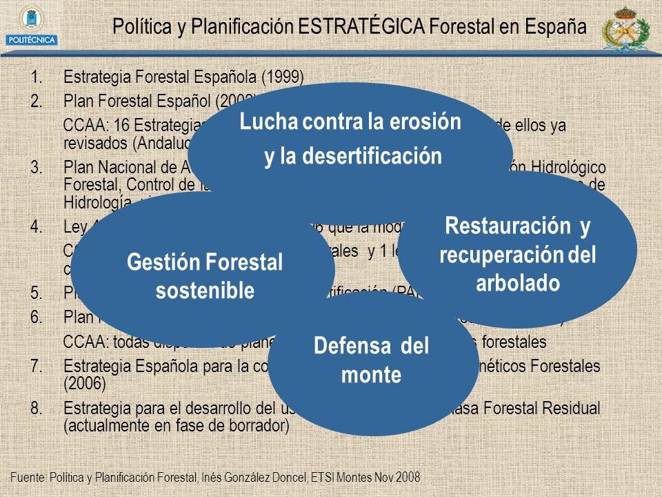 Política y Planificación ESTRATÉGICA Forestal en España 1.Estrategia Forestal Española (1999) 2.Plan Forestal Español (2002) CCAA: 16 Estrategias o Pl