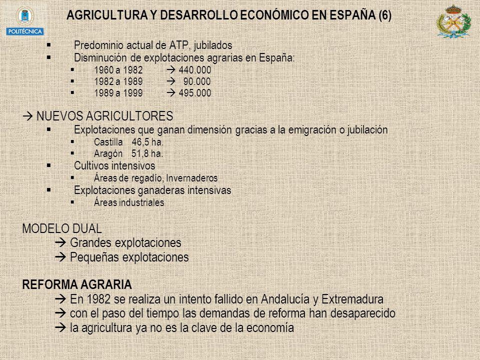 AGRICULTURA Y DESARROLLO ECONÓMICO EN ESPAÑA (6) Predominio actual de ATP, jubilados Disminución de explotaciones agrarias en España: 1960 a 1982 440.