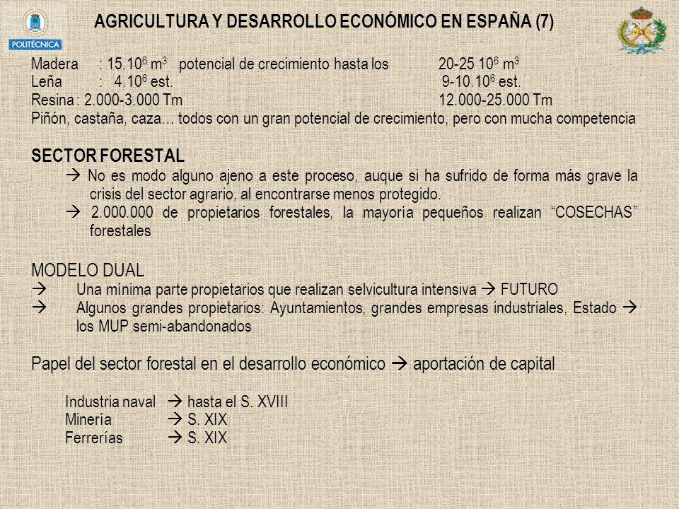 AGRICULTURA Y DESARROLLO ECONÓMICO EN ESPAÑA (7) Madera: 15.10 6 m 3 potencial de crecimiento hasta los 20-25 10 6 m 3 Leña : 4.10 6 est. 9-10.10 6 es
