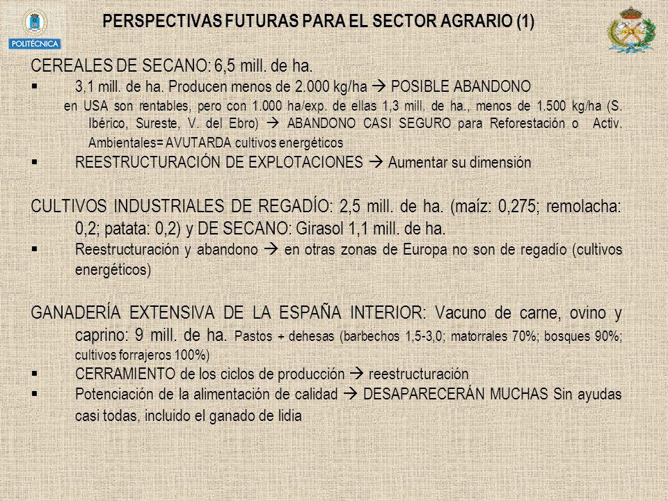 PERSPECTIVAS FUTURAS PARA EL SECTOR AGRARIO (1) CEREALES DE SECANO: 6,5 mill. de ha. 3,1 mill. de ha. Producen menos de 2.000 kg/ha POSIBLE ABANDONO e
