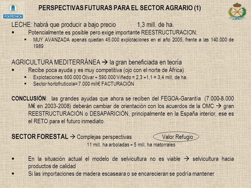 PERSPECTIVAS FUTURAS PARA EL SECTOR AGRARIO (1) LECHE: habrá que producir a bajo precio 1,3 mill. de ha. Potencialmente es posible pero exige importan