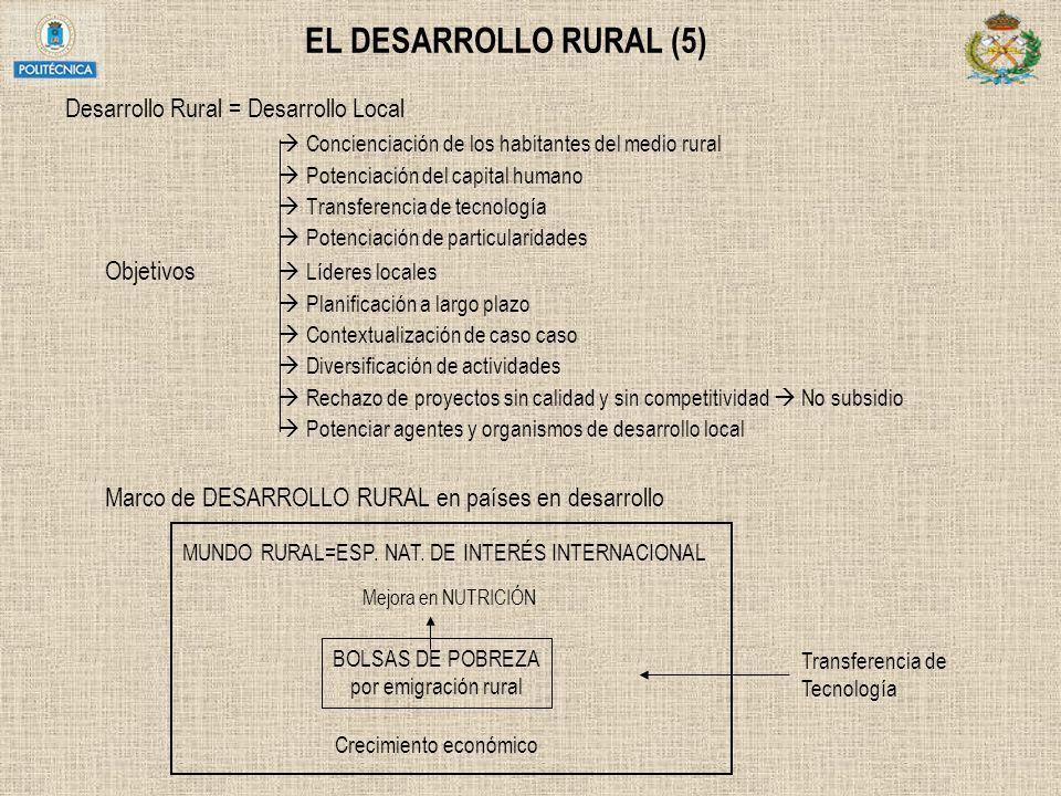 EL DESARROLLO RURAL (5) Desarrollo Rural = Desarrollo Local Concienciación de los habitantes del medio rural Potenciación del capital humano Transfere