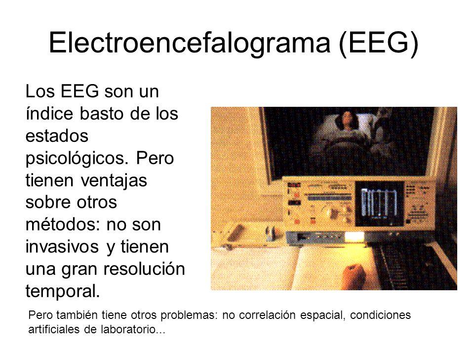 Electroencefalograma (EEG) Los EEG son un índice basto de los estados psicológicos.