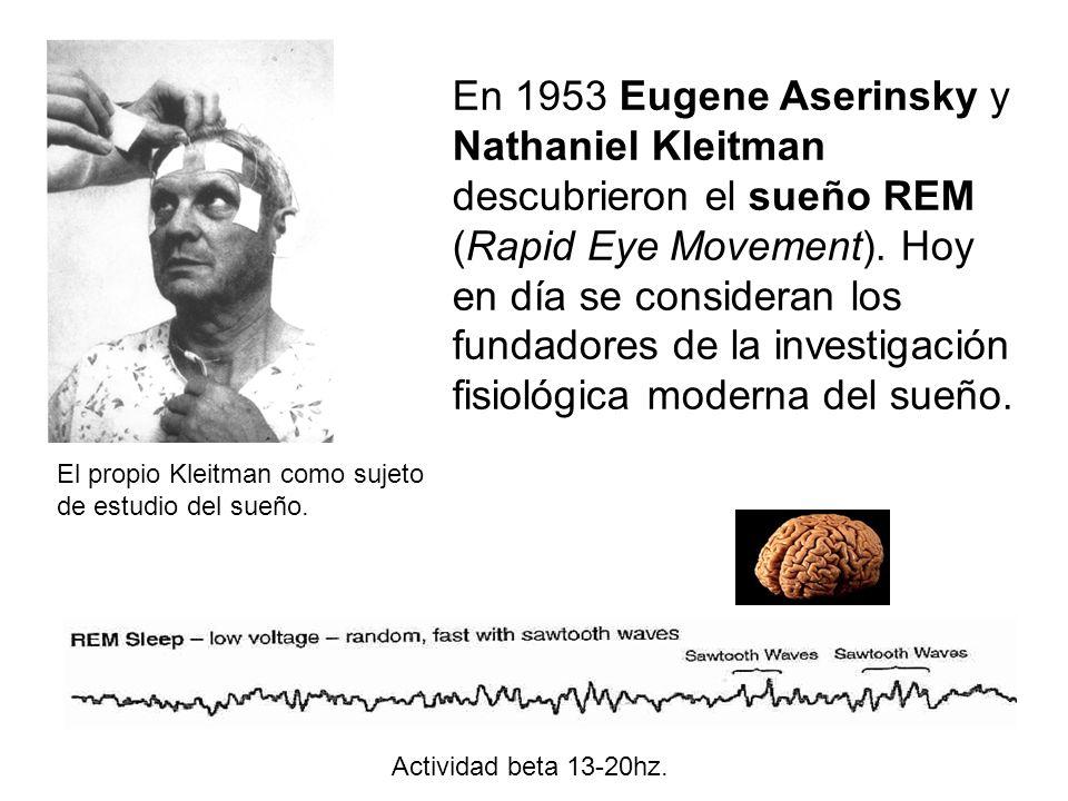 En 1953 Eugene Aserinsky y Nathaniel Kleitman descubrieron el sueño REM (Rapid Eye Movement).