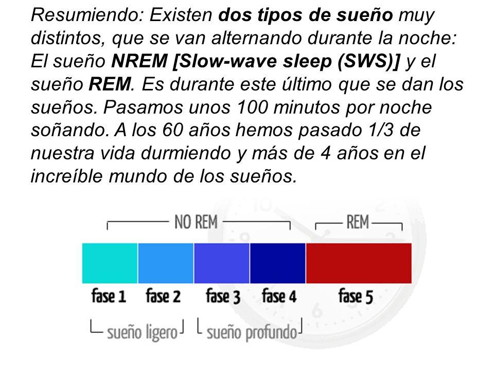 Resumiendo: Existen dos tipos de sueño muy distintos, que se van alternando durante la noche: El sueño NREM [Slow-wave sleep (SWS)] y el sueño REM.