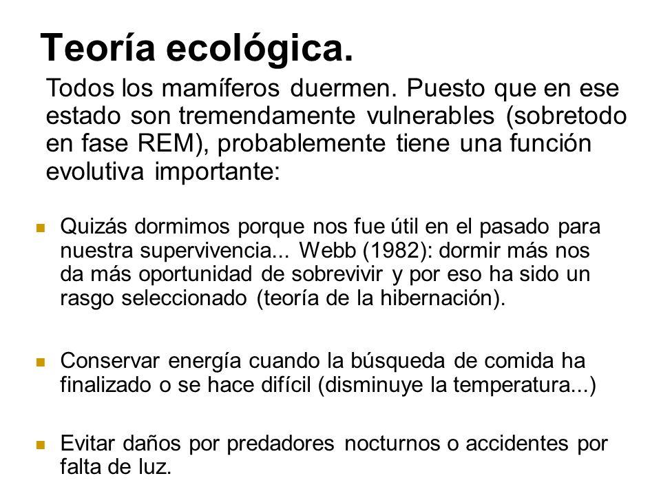 Teoría ecológica.Quizás dormimos porque nos fue útil en el pasado para nuestra supervivencia...
