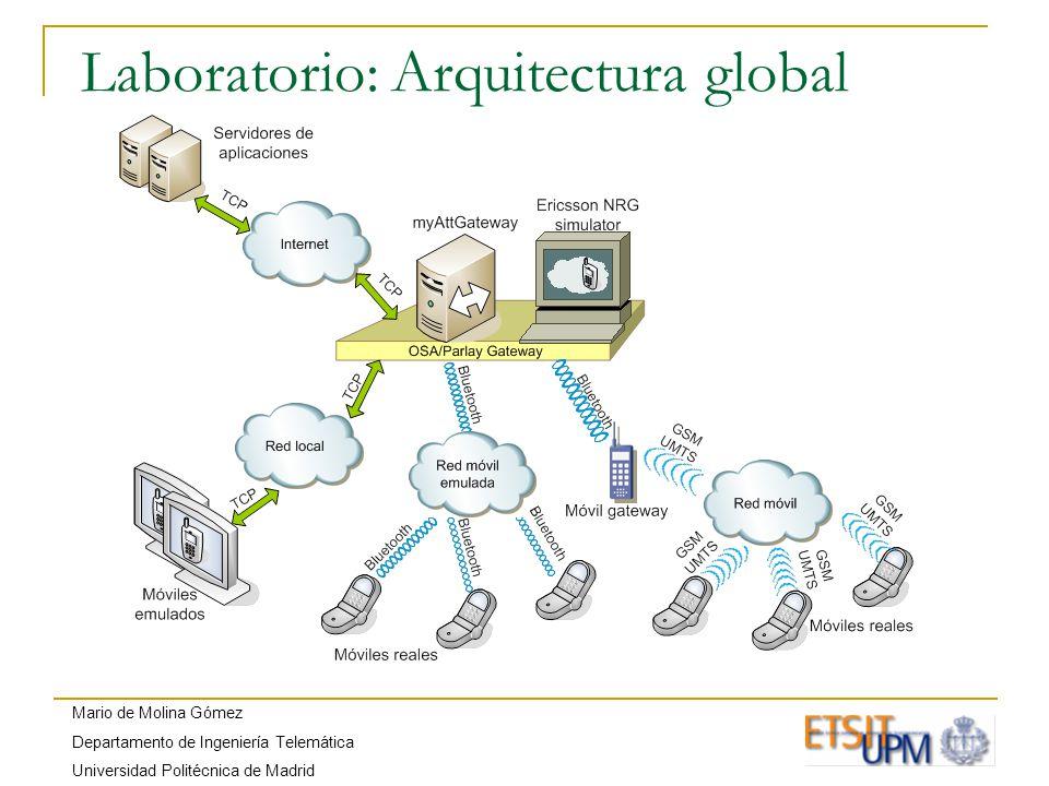 Mario de Molina Gómez Departamento de Ingeniería Telemática Universidad Politécnica de Madrid Laboratorio: Arquitectura global