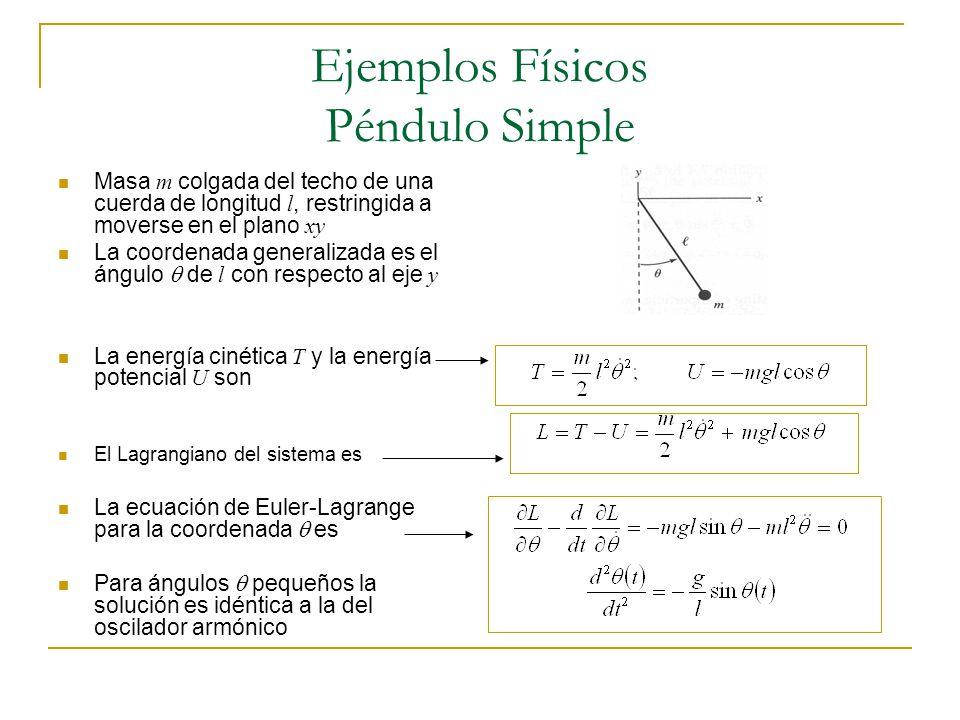 Ejemplos Físicos Péndulo Simple Masa m colgada del techo de una cuerda de longitud l, restringida a moverse en el plano xy La coordenada generalizada