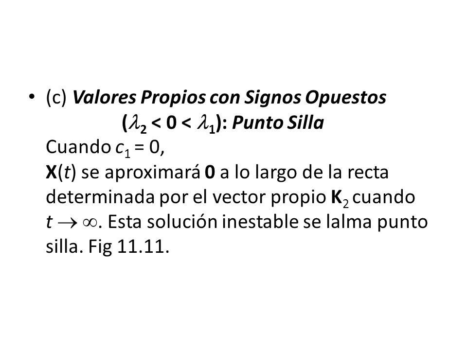 (c) Valores Propios con Signos Opuestos ( 2 < 0 < 1 ): Punto Silla Cuando c 1 = 0, X(t) se aproximará 0 a lo largo de la recta determinada por el vector propio K 2 cuando t.