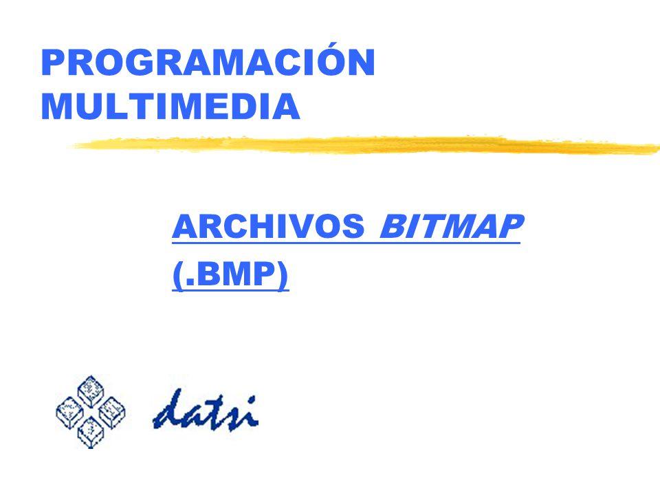 PROGRAMACIÓN MULTIMEDIA ARCHIVOS BITMAP (.BMP)