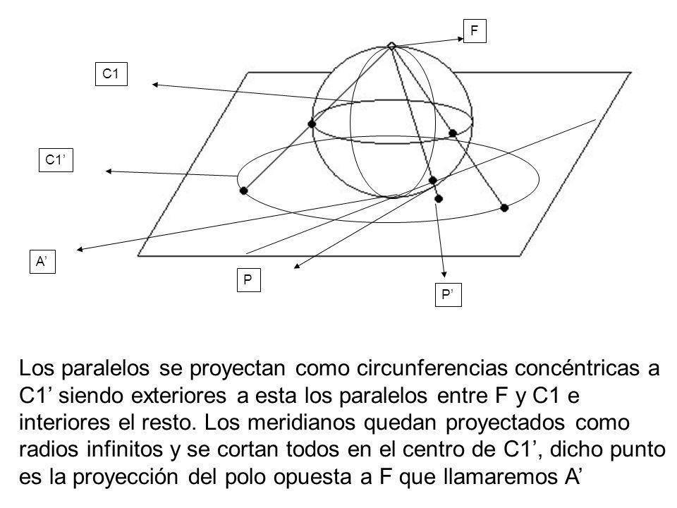 Los paralelos se proyectan como circunferencias concéntricas a C1 siendo exteriores a esta los paralelos entre F y C1 e interiores el resto. Los merid