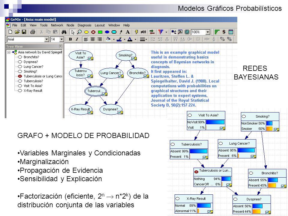 Modelos Gráficos Probabilísticos GRAFO + MODELO DE PROBABILIDAD Variables Marginales y Condicionadas Marginalización Propagación de Evidencia Sensibilidad y Explicación Factorización (eficiente, 2 n n*2 k ) de la distribución conjunta de las variables REDES BAYESIANAS