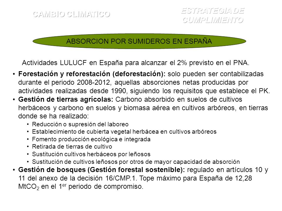 ABSORCION POR SUMIDEROS EN ESPAÑA Actividades LULUCF en España para alcanzar el 2% previsto en el PNA. Forestación y reforestación (deforestación): so
