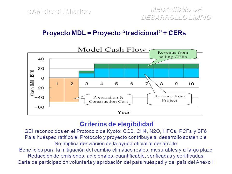 Proyecto MDL = Proyecto tradicional + CERs Criterios de elegibilidad GEI reconocidos en el Protocolo de Kyoto: CO2, CH4, N2O, HFCs, PCFs y SF6 País huésped ratificó el Protocolo y proyecto contribuye al desarrollo sostenible No implica desviación de la ayuda oficial al desarrollo Beneficios para la mitigación del cambio climático reales, mesurables y a largo plazo Reducción de emisiones: adicionales, cuantificable, verificadas y certificadas Carta de participación voluntaria y aprobación del país huésped y del país del Anexo I