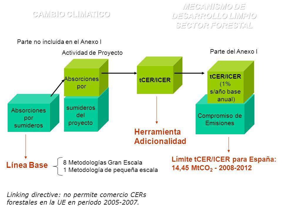 Absorciones por sumideros sumideros del proyecto Compromiso de Emisiones Absorciones por tCER/lCER Parte no incluida en el Anexo I Actividad de Proyecto tCER/lCER (1% s/año base anual) Línea Base Parte del Anexo I Herramienta Adicionalidad 8 Metodologías Gran Escala 1 Metodología de pequeña escala Linking directive: no permite comercio CERs forestales en la UE en periodo 2005-2007.