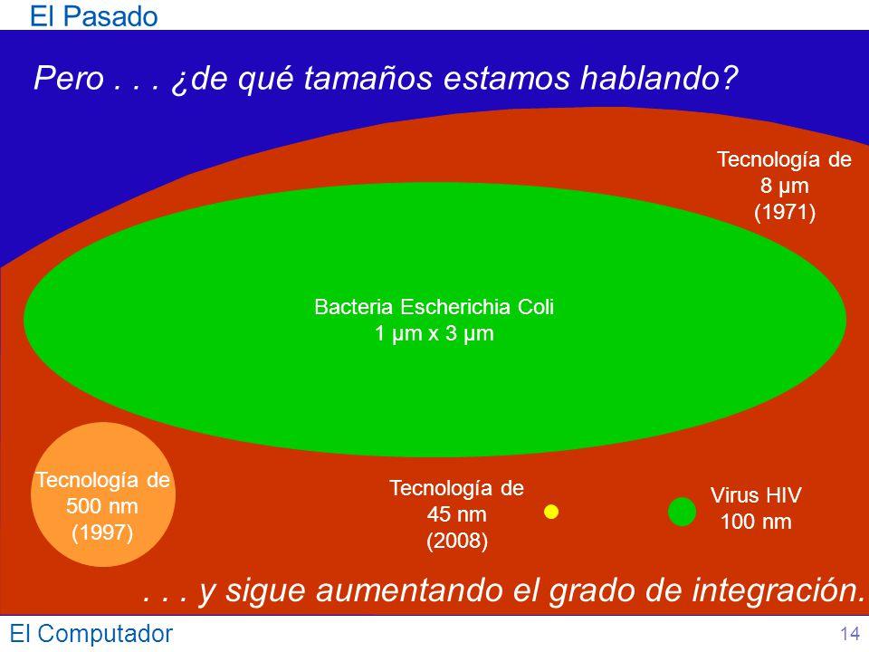 El Computador 14 El Pasado Bacteria Escherichia Coli 1 µm x 3 µm Virus HIV 100 nm Tecnología de 45 nm (2008) Pero... ¿de qué tamaños estamos hablando?
