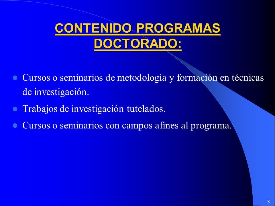 3 CONTENIDO PROGRAMAS DOCTORADO: Cursos o seminarios de metodología y formación en técnicas de investigación.