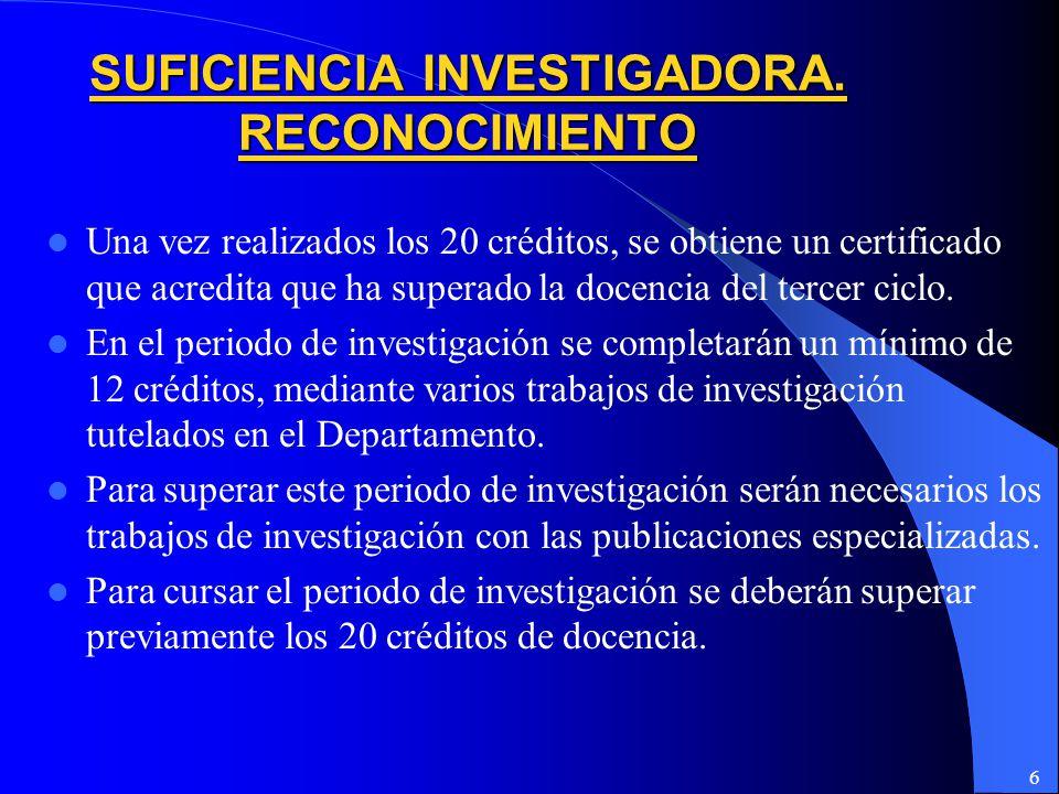 6 SUFICIENCIA INVESTIGADORA.