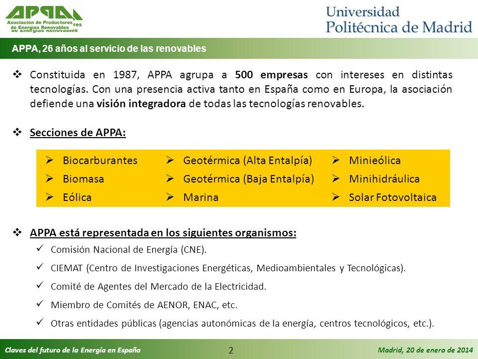 Claves del futuro de la Energía en EspañaMadrid, 20 de enero de 2014 2 Constituida en 1987, APPA agrupa a 500 empresas con intereses en distintas tecn