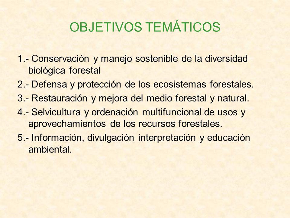 OBJETIVOS TEMÁTICOS 1.- Conservación y manejo sostenible de la diversidad biológica forestal 2.- Defensa y protección de los ecosistemas forestales. 3