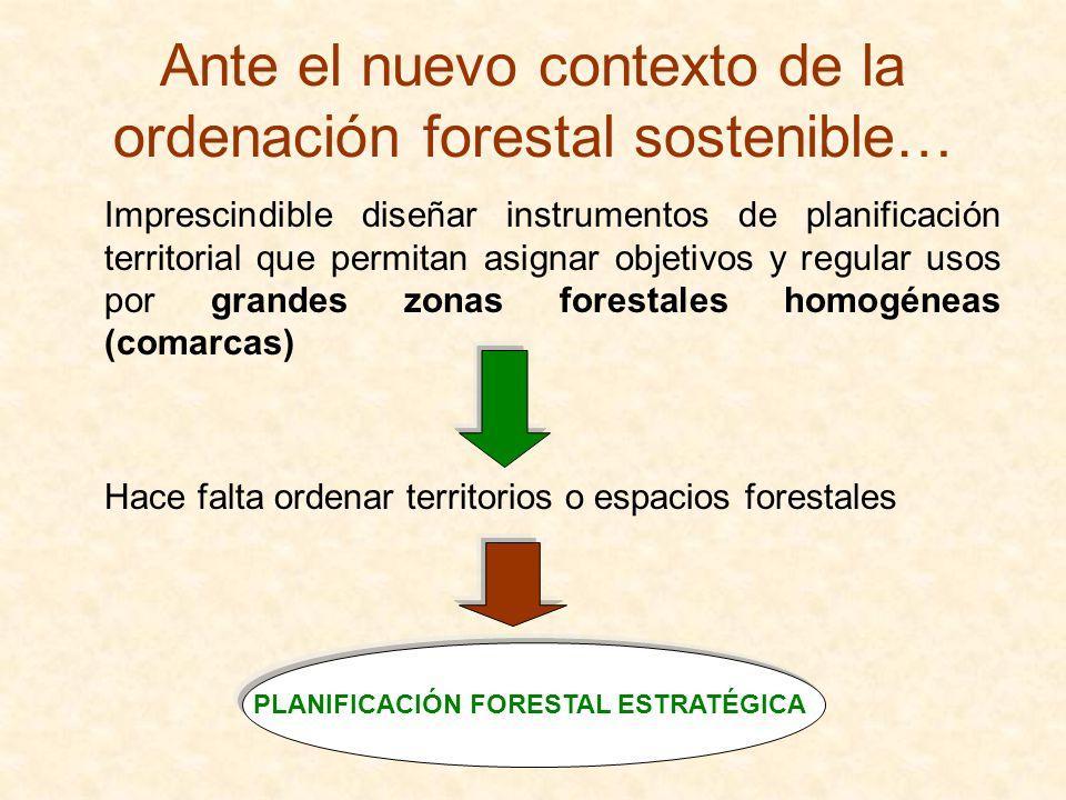Ante el nuevo contexto de la ordenación forestal sostenible… Imprescindible diseñar instrumentos de planificación territorial que permitan asignar obj