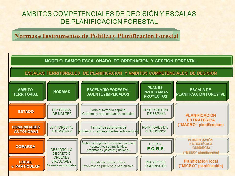 LOCAL o PARTICULAR COMARCA Escala de monte o finca Propietarios públicos o particulares PROYECTOS ORDENACIÓN DESARROLLO DECRETOS ÓRDENES CIRCULARES No