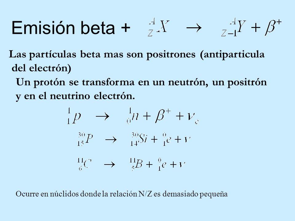 Emisión beta + Las partículas beta mas son positrones (antiparticula del electrón) Un protón se transforma en un neutrón, un positrón y en el neutrino