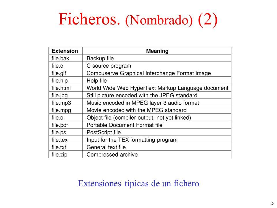3 Ficheros. (Nombrado) (2) Extensiones típicas de un fichero