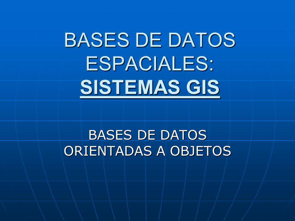 BASES DE DATOS ESPACIALES: SISTEMAS GIS BASES DE DATOS ORIENTADAS A OBJETOS