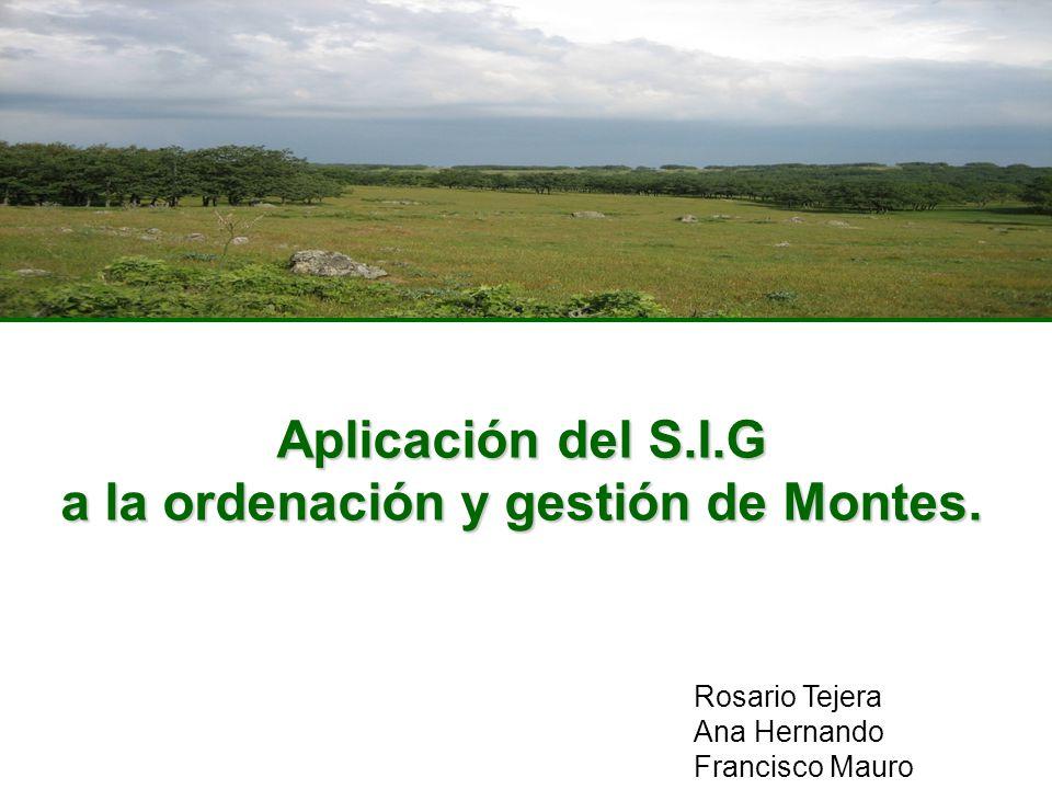 Aplicación del S.I.G a la ordenación y gestión de Montes. Rosario Tejera Ana Hernando Francisco Mauro