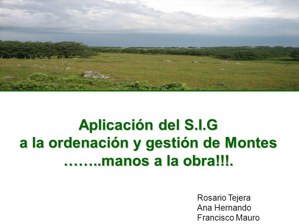 Aplicación del S.I.G a la ordenación y gestión de Montes ……..manos a la obra!!!. Rosario Tejera Ana Hernando Francisco Mauro