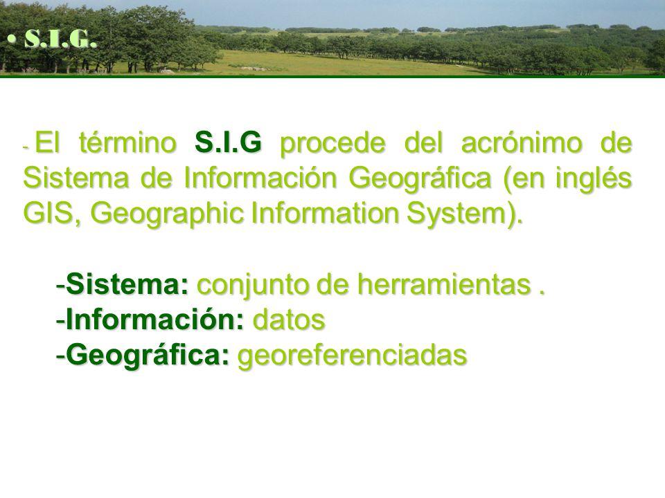 - El término S.I.G procede del acrónimo de Sistema de Información Geográfica (en inglés GIS, Geographic Information System). -Sistema: conjunto de her