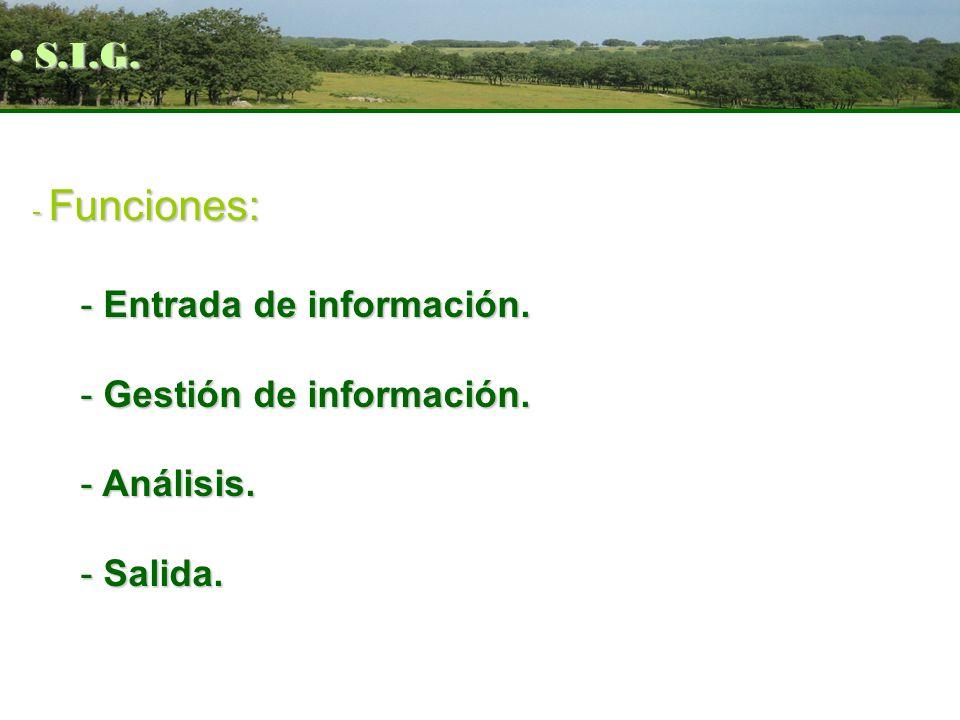 - Funciones: - Entrada de información. - Gestión de información. - Análisis. - Salida. S.I.G. S.I.G.