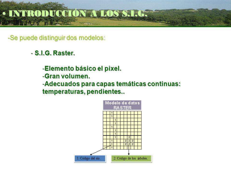 -Se puede distinguir dos modelos: - S.I.G. Raster. -Elemento básico el pixel. -Gran volumen. -Adecuados para capas temáticas continuas: temperaturas,