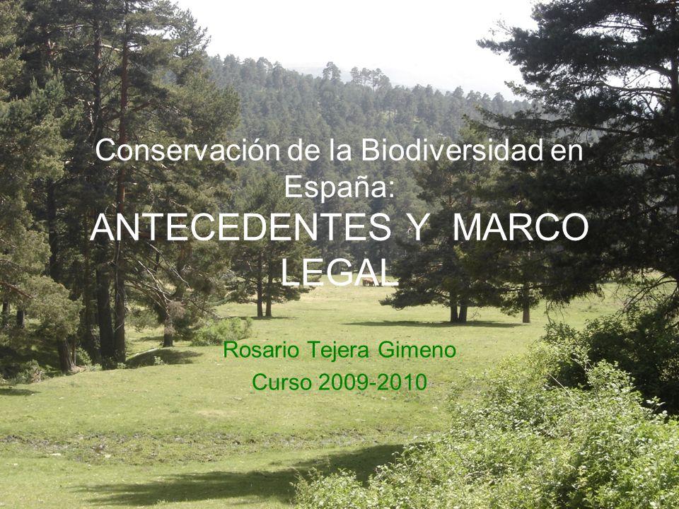 Conservación de la Biodiversidad en España: ANTECEDENTES Y MARCO LEGAL Rosario Tejera Gimeno Curso 2009-2010