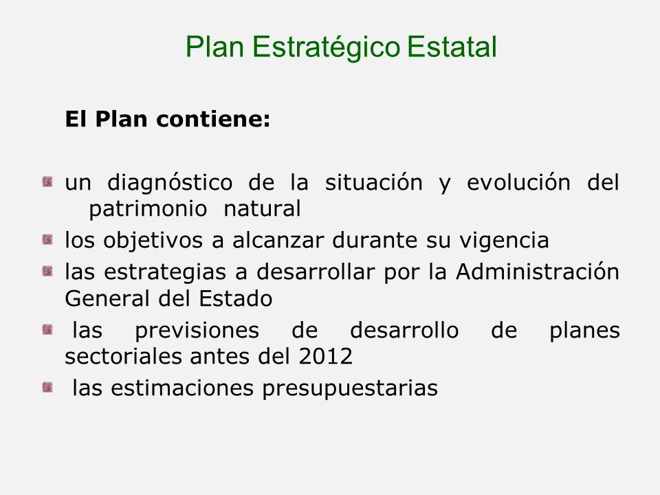 Plan Estratégico Estatal El Plan contiene: un diagnóstico de la situación y evolución del patrimonio natural los objetivos a alcanzar durante su vigen