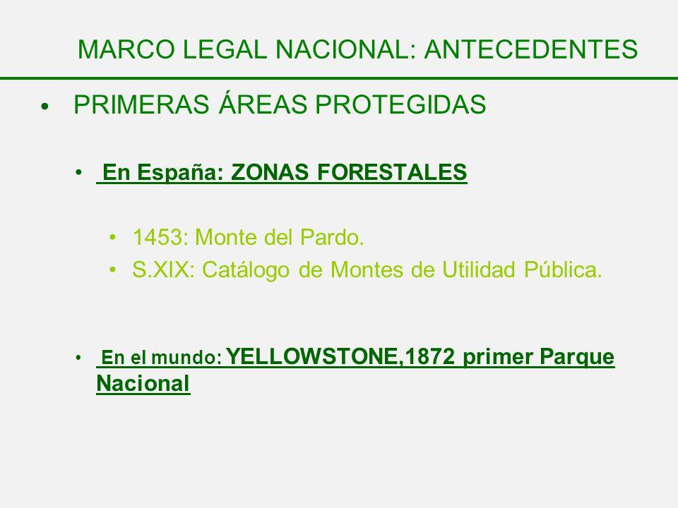 MARCO LEGAL NACIONAL: ANTECEDENTES PRIMERAS ÁREAS PROTEGIDAS En España: ZONAS FORESTALES 1453: Monte del Pardo. S.XIX: Catálogo de Montes de Utilidad