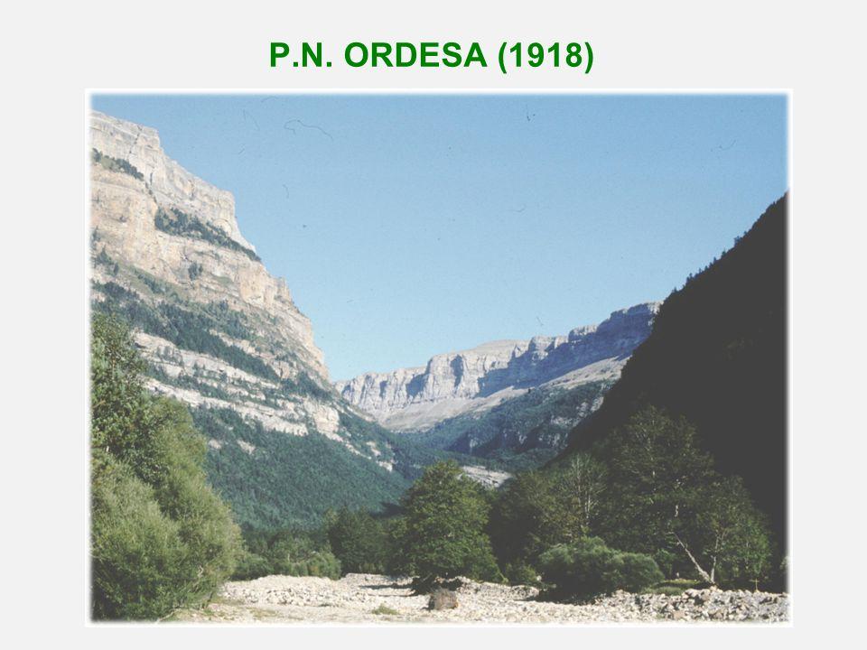 P.N. ORDESA (1918)